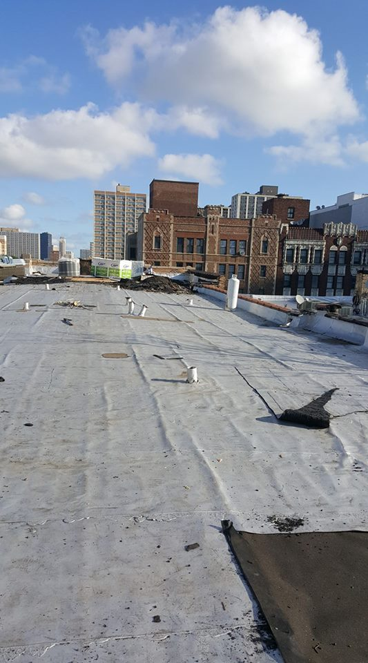 Eagle 1 Roofing Company - roofing contractor  | Photo 3 of 3 | Address: 1442 50th Ct, Cicero, IL 60804, USA | Phone: (630) 202-8304