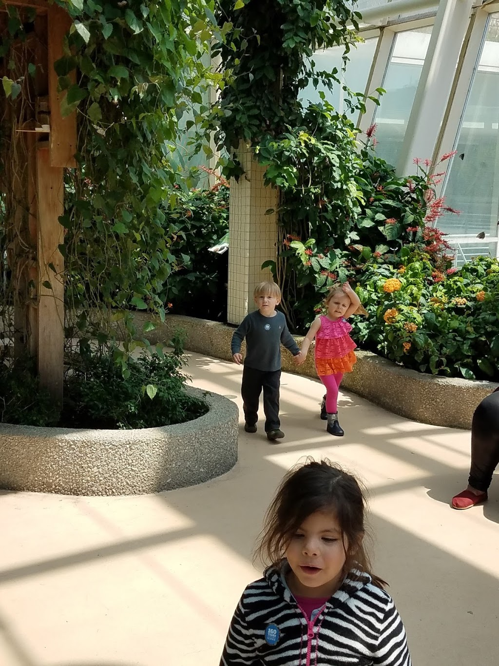 Aunt Kays inhome daycare 24/7 - point of interest  | Photo 2 of 2 | Address: 3442 N Albany Ave, Chicago, IL 60618, USA | Phone: (773) 443-1258