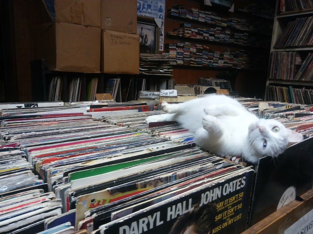 Out of the Past Records - electronics store  | Photo 7 of 10 | Address: 4407 W Madison St, Chicago, IL 60624, USA | Phone: (773) 626-3878