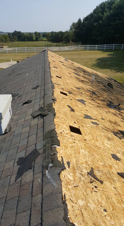 Eagle 1 Roofing Company - roofing contractor  | Photo 1 of 3 | Address: 1442 50th Ct, Cicero, IL 60804, USA | Phone: (630) 202-8304