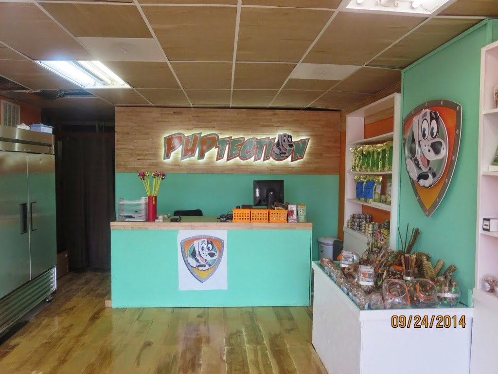PUPtection Health & Nutrition Center - pet store  | Photo 2 of 10 | Address: 1335 Ashland Ave, Chicago, IL 60622, USA | Phone: (773) 278-9205
